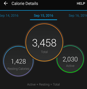 what-is-a-garmin-vivosmarthr-calories